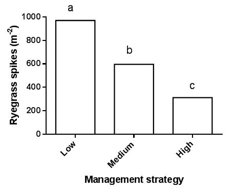 Figure 2: Effect of management strategy on annual ryegrass spike numbers at harvest at Lake Bolac in 2015. RT canola was sown in 2014 and wheat in 2015. Management strategies are listed in Table 5. Different letters indicate significant differences between means.