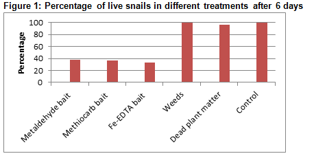Figure 1: Percentage of live snails in different treatments after 6 days