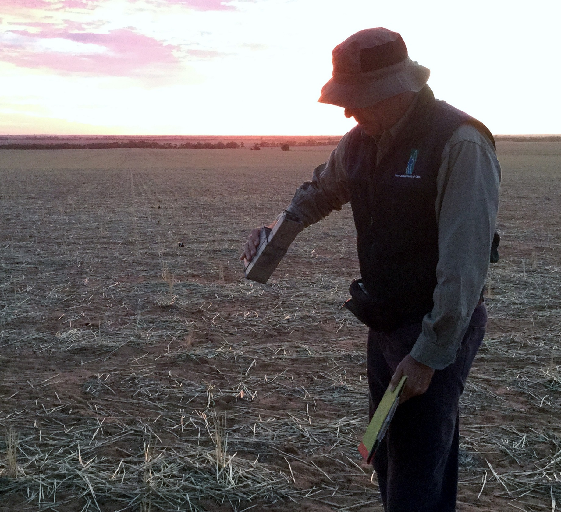Checking a mouse trap, with the sun on the horizon in the background